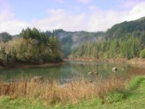 Umpqua River Haven, Central OR